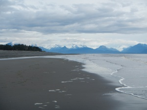 The beach. Homer, Alaska